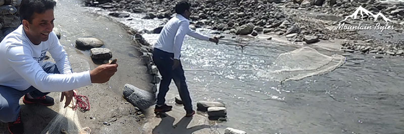 Fishing in pabber river rohru